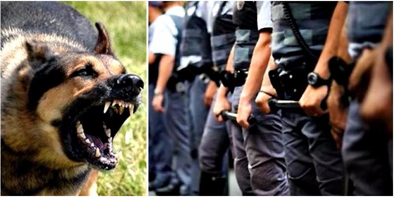Dirigencia del fútbol de Soriano, denuncia lo que odia toda la gente de la policía