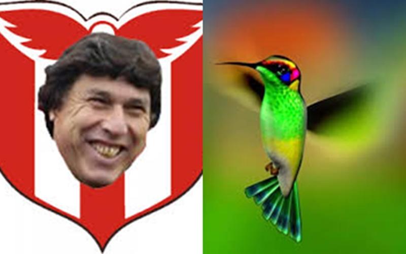El libro del picaflor: Denuncian a Carrasco en Rivera por plagio