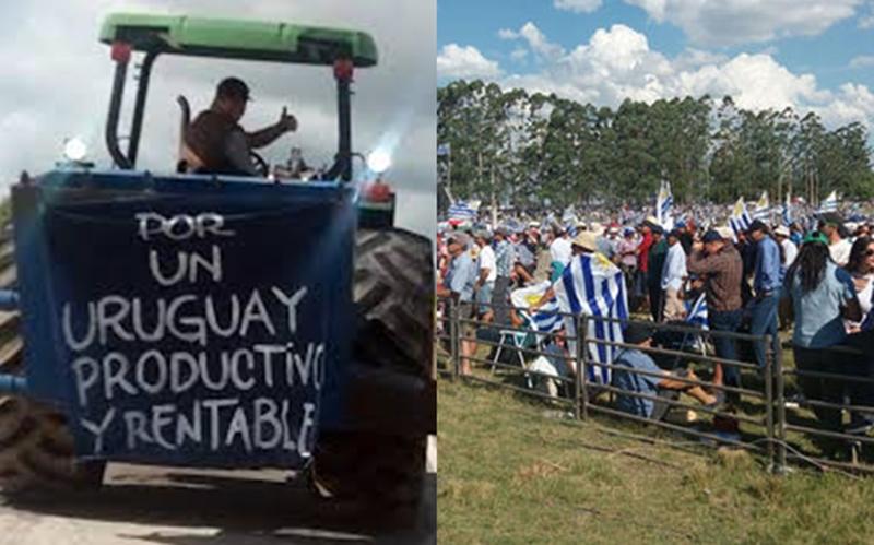 """""""Hay terratenientes en Uruguay, no sabemos quiénes son, sabemos que son grandes capitales extranjeros, tienen beneficios impositivos, no se mueven en 4×4, sus responsables, gerentes, directores, etc. viajan en aviones privados y muy rara vez vienen al Uruguay…"""""""
